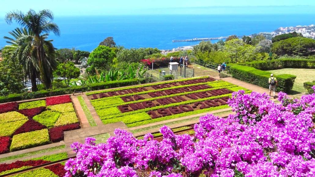 Madère, Jardin botanique de Funchal sur les hauts de la ville, un parc abritant plus de dix mille espèces de plantes et d'arbres