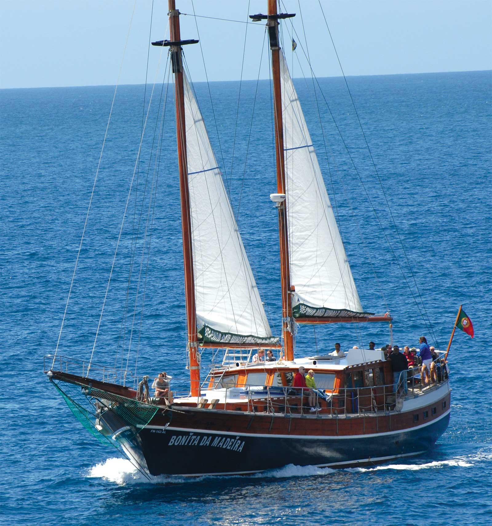 Activité nautique Bonita da Madeira à Madère