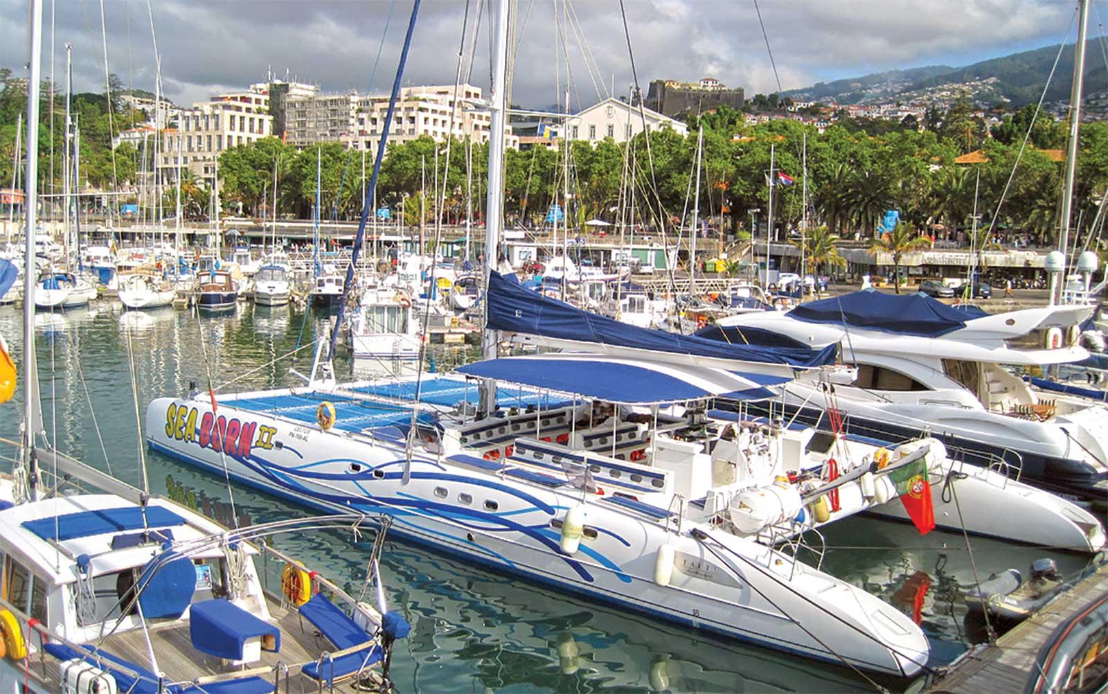 Activité nautique Sea Born Catamaran à Madère