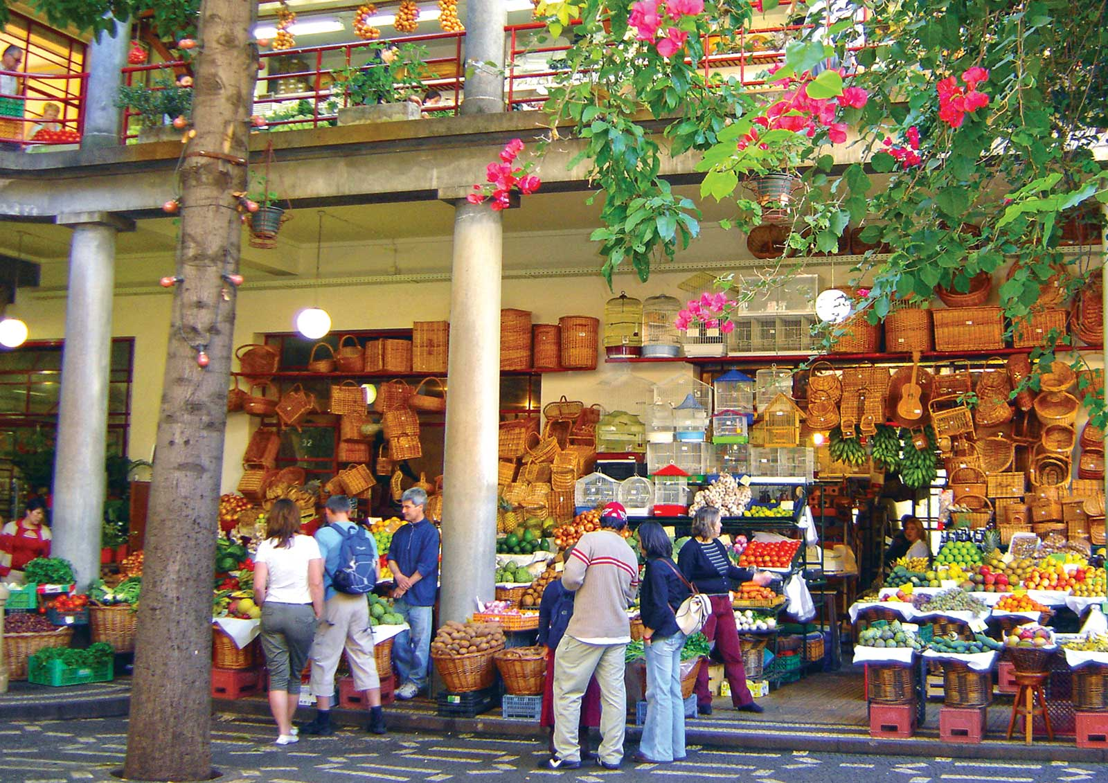 Excursion à Madère Visite de la ville de Funchal et du marché