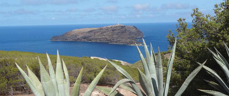 Randonnée Nature et Aventure à Porto Santo
