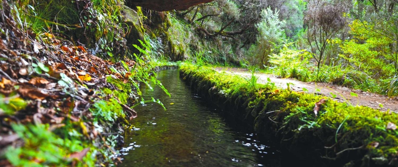 Randonnée dans la Levada Caldeirão Verde sur l'île de Madère